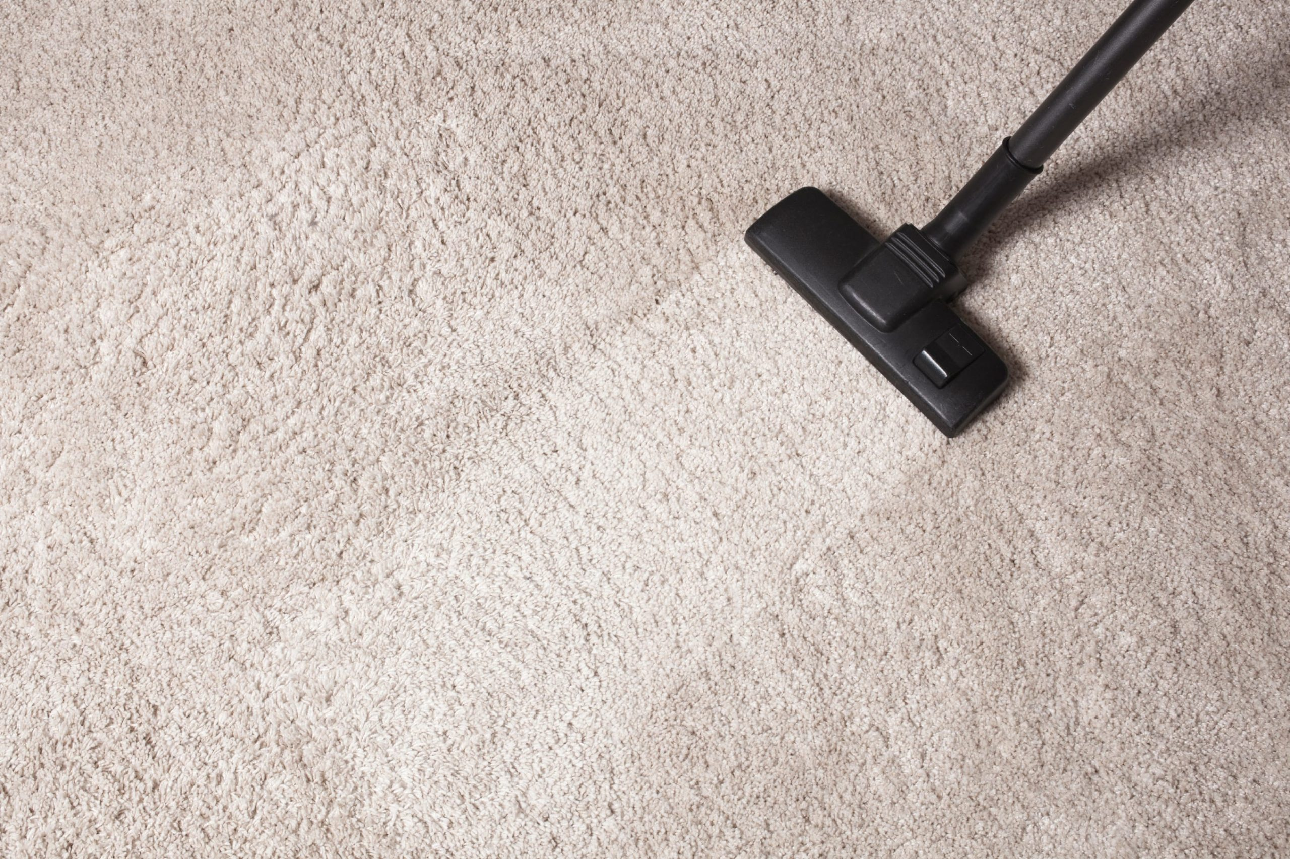 Professional Carpet Cleaning Walkerville